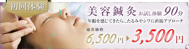 美容鍼灸お試し体験90分。年齢を感じてきたら...たるみやシワに直接アプローチ。通常価格6,500円が3,500円